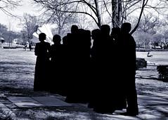031817-901Fx3 (kzzzkc) Tags: nikon d7100 usa missouri kansascity nelsonatkins museumofart weddingparty silhouette tree shadow momochrome