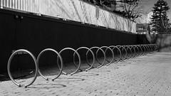 006crpshsatbwfwl (citatus) Tags: bicycle rack racks 118 balliol street toronto canada spring afternoon 2017 bw pentax k3 ii ring rings