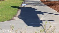 MiG-21F-13 688 NVA-LSK DDR | Luftfahrtmuseum Hannover-Laatzen (Horatiu Goanta Aviation Photography) Tags: mikoyan gurevich mikoyangurevich миг миг21 mig21 mig21fishbed fishbed delta deltawing taileddelta balalaika sovietfighter sovietaircraft russianaircraft coldwar coldwarjet coldwaraircraft combat combataircraft afterburner reheat fighter supersonic subsonic jet jetengine wings turbine turbojet military militaryaviation fighterjet jetfighter fastjet interceptor fighterinterceptor mig21f13 mig21f fishbedc nva nvalsk lsk ddr gdr nationalevolksarmee luftstreitkräftedernationalenvolksarmee eastgermany eastgermanairforce preserved museum luftfahrtmuseumhannoverlaatzen luftfahrtmuseumlaatzen luftfahrtmuseumhannover horatiu goanta horatiugoanta