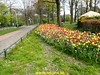 "2017-04-22          De Zeemansloop       41 Km  (42) • <a style=""font-size:0.8em;"" href=""http://www.flickr.com/photos/118469228@N03/33359840034/"" target=""_blank"">View on Flickr</a>"
