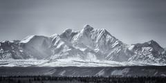 Mount Hayes (frostnip907) Tags: landscape mountains alaska