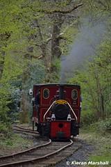LM44 at Stradbally, 17/4/17 (hurricanemk1c) Tags: railways railway train trains ireland industrialrailway narrowgauge stradbally stradballywoodlandsrailway 2017 lm44 bórdnamóna irishturfboard steamloco andrewbarclay clonsatworks