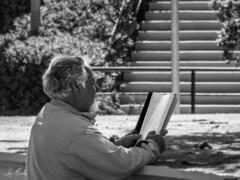 La lectura (lumior) Tags: jardines valencia viaje leyendo personas naturaleza ciudaddevalencia parquedebenicalap mayor españa comunidadvalenciana analizar deletrear descifrar documento estudiar interpretar lectura libro ojear repasar valència es