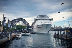 Sydney Harbour (missgeok) Tags: sydneyharbour circularquay australia sydney cruiseship cloudyday seagulls water outdoor mood atmosphere sydneyharbourbridge beautiful holiday travel cityscape composition fun angle view cruise ilovecruising ship boats ilovesydney nsw ilovensw