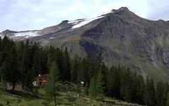 08-IMG_8414 (hemingwayfoto) Tags: österreich alm alpen austria baum europa felsen fichte gainschnigghütte hütte hohetauern landschaft nationalpark natur naturschutzgebiet rauris reise schnee tannenbaum urwald