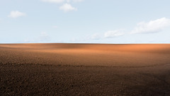 Empty Fields: Vast Screens for Light Games (panfot_O (Bernd Walz)) Tags: field fields light wind movement emptyness space vastness minimal minimalism landscape rural countryside agriculture fineart shadow