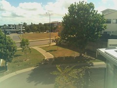 2017-05-01T10:30:04.324252+10:00 (growtreesgrow) Tags: trees timelapse raspberrypi