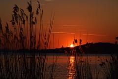 Sono una persona strana: se sono arrabbiata col mondo vado a farci pace fotografando tramonti (federicalepri) Tags: sunset lake umbria travel italy nofilter
