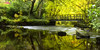 The First Forth Bridge (J McSporran) Tags: scotland trossachs milton lochard riverforth landscape
