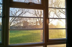 spring at last, well street common e9 from my living room, 2017-03-20, 17-54-55 (tributory) Tags: home light window upvc frame windowframe framing spring weather sunlight yellow green blue park trees angle dispersion windows rectangle hackney e9 innerlondon london urban