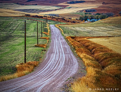 Tracks (James Neeley) Tags: idaho ruralidaho farmlane southeastidaho jamesneeley