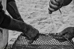 DSC_1940 (ahcravo gorim) Tags: xávega torreira portugal mãos mar gorim gaivotas ahcravo
