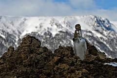 archaeological treasure..... (KvikneFoto) Tags: bokeh bottle flaske tamron nikon snø snow