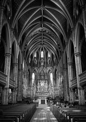 Notre-Dame Cathedral Basilica (Ottawa) (Richard Pilon) Tags: cathedral bw ottawa blackandwhitephotography building blackwhite canada blackandwhite notredamecathedralbasilica olympus architecture historic