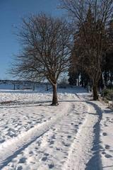 Am Kreuzberg (meine.augenblicke) Tags: bäume reise deutschland nordrheinwestfalen winter snow wege schnee spuren menschen kreuzberg ways trees winterberg de 2017 sauerland