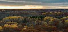 Colors of the autumn (Vasil1978) Tags: fall autumn minnesota evening d810 clouds cloudy colors landscape sunset