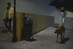 Couple with dog at night (rainertessmann) Tags: sony a7 night lissabon lisbon light street mitakon 50mm 095 dark knight high iso