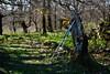 Un momento de descanso (Paulo Etxeberria) Tags: belleku urbasa mendia monte mountain montagne basoa bosque forest forêt makilak bastones walkingpoles bâtons