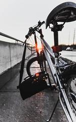Bike Vibes (rayorauck2) Tags: bike sunset path perspective white