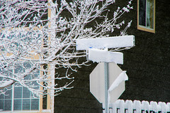 Snowday 04292017-029 (laureanophoto) Tags: snow042017 winter cold snow street frozen storm pentax 18135