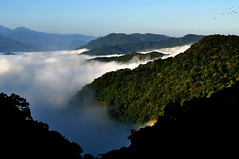 111 Clouds (tsuping.liu) Tags: outdoor cloud colorofsky mountain moment morningglory landscape lighting bright birds ecology ecotour feeling photoborder perspective pattern passion photographt photoboder nature natureselegantshots naturesfinest nationalpark