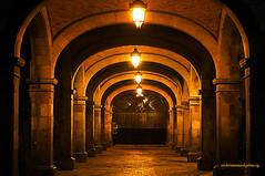 COLONIAL ARCHES AND COLUMNS. (Viktor Manuel 990.) Tags: portal arches arcos columns columnas colonialarchitecture arquitecturacolonial digitalart artedigital querétaro méxico victormanuelgómezg