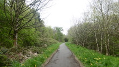 Huddersfield   Newtown - Mirfield    old railway (dave_attrill) Tags: huddersfield newtown hillhouse mirfield lmsr london midland scottish railway disused line goods only branch trackbed west yorkshire riding cycle path foothpath ncn connection sheffieldtobradford