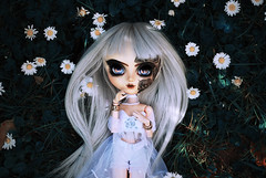 Daisy Chain (Nenn.) Tags: nenn dolls pullip makeup nenndollsmakeup junplanning groove groovedoll