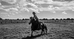 JINETE EN BLANCO Y NEGRO (Marina Balasini & Juan Montiel) Tags: argentino argentina caballo horse