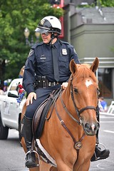 Police Officer (swong95765) Tags: police mounted officer horse parade