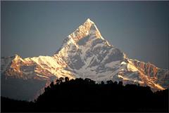 sunrise at the Machapuchare (Bernergieu) Tags: nepal machapuchare fishtail mountains trekking hiking sunrise