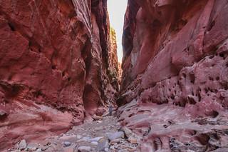 Crack Canyon, Utah,USA.