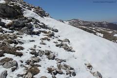 la cresta inpennata (Roberto Tarantino EXPLORE THE MOUNTAINS!) Tags: monte cornacchia anticima nord puzzillo abruzzo cresta 2000 neve snow inverno primavera aprile campofelice campo felice valle morretano
