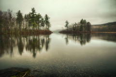 Beginning-to-Rain-4.27 (desouto) Tags: nature landscape rivers lakes sky trees fog rain wildflowers yellow dreary quiet