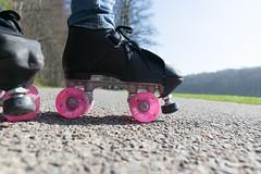 Roller (raphael.dropsy) Tags: roller tervuren belgium