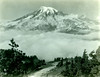 P1.WA2.014 (American Alpine Club Photo Library) Tags: mountrainier plummerpeak mountrainiernationalpark