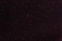 Night sky over Boomerang Beach, NSW (Craig Jewell Photography) Tags: sky night dark stars weekend australia astrophotography nsw newsouthwales astronomy thegang starfield boomerangbeach Astrometrydotnet:status=solved Astrometrydotnet:version=14400 filename20130519012511x0k0153cr2iso12800f5613sec0evcanoneos1dmarkiv100300mm32°2023s152°3232e3002013 Astrometrydotnet:id=alpha20130518585050