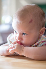 (lindilindi) Tags: baby cute girl infant liliana modelreleased