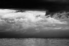 In ostinata Tranquillit (bebo82) Tags: sea blackandwhite bw clouds nuvole mare pentax biancoenero cigni pentaxk20d pentaxk20 swans