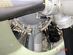 "Grumman FM-2 Wildcat (30) • <a style=""font-size:0.8em;"" href=""http://www.flickr.com/photos/81723459@N04/9247102642/"" target=""_blank"">View on Flickr</a>"