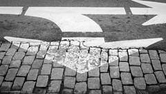 Mixed Media (Corey Templeton) Tags: road street city summer portland blackwhite other nikon paint downtown painted maine line cobble cobblestone portlandmaine congressstreet d600