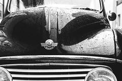 Morris (Conny Lundgren) Tags: leica 50mm skne sweden schweden sverige malm sucia malmo suecia scania resund m9 sude resund svezia ruotsi isve summicron50 11819  leicasummicronm50mm leicam9 50mmf2summicronm