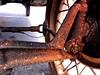 DSC02127 (bruckzone) Tags: ford utah tour grandcanyon parks canyonlands bryce zion nationalparks modelt