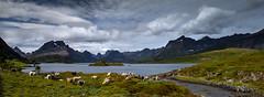 Norwegian Landscape, Lofoten islands... (Pewald) Tags: bestcapturesaoi