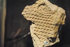 Royal Tyrrell Museum (Ulixis) Tags: museum dark skeleton blog model ancient royal drumheller alberta preserved dinosaurs extinct fossils tyrrell badland ulixis