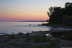 4620 (ontario photo connection) Tags: park sunset sky ontario canada water landscape skies watershed marsh ajax lakeontario durhamregion duffinscreek