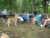 GreyhoundPlanetDay2008044