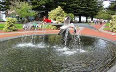 Having Fun (Jocey K) Tags: trees sky people sculpture plants water seagull southaustralia victorharbor austraila