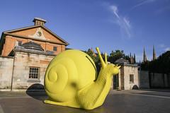 Art And About (Halans) Tags: sydney turbo snails artandabout crackingartgroup snailovation