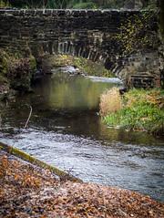 Near the Falls of Dochart (DigHazuse) Tags: uk greatbritain trip bridge autumn our vacation color beauty scotland killin leavs unitedkingdon onholiday 2013 ouruktrip2013